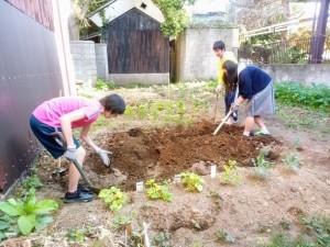 畝作り中①