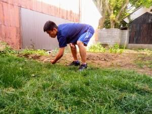 芝刈りももちろん手作業