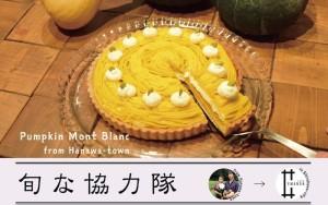 旬な協力隊チラシ_塙2017_タルトキャプチャ